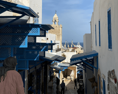 """<span class=""""dl-pink-color"""">Tunisia</span>"""